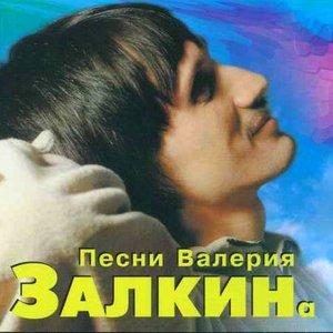 Image for 'Валерий Залкин'
