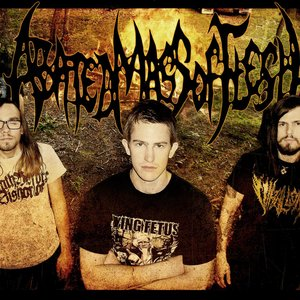 Image pour 'Abated Mass Of Flesh'