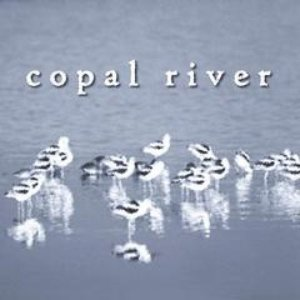 Image for 'Copal River'
