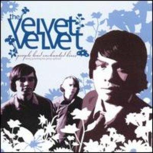 Image for 'The Velvet Velvet'