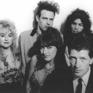 Image for 'Herman Brood & His Wild Romance'