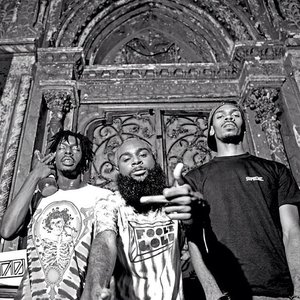 Image for 'Flatbush ZOMBiES'