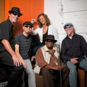 Image for 'The Lauren Mitchell Band'