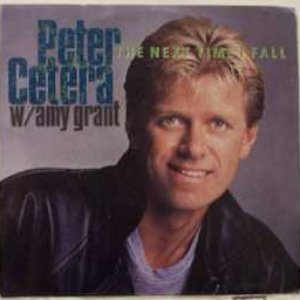 Image for 'Peter Cetera & Amy Grant'