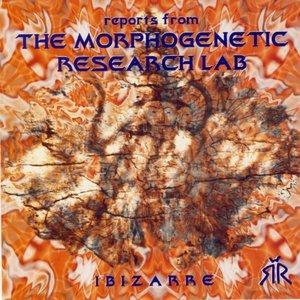Image for 'The Morphogenetic'