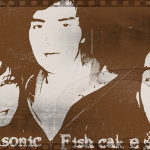 Image for 'Vultrasonic Fishcake'