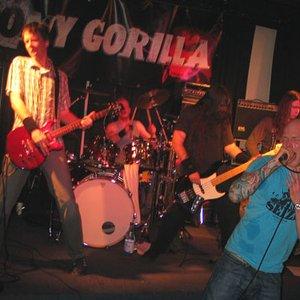 Bild för 'TONY GORILLA'