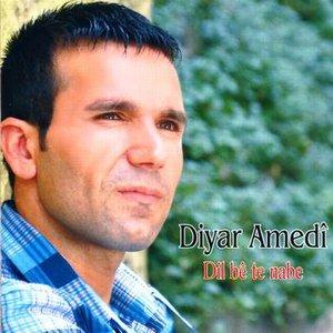 Image for 'Diyar Amedi'