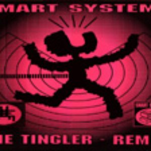 Image pour 'Smart Systems'