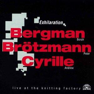 Image for 'Borah bergman / Peter Brötzmann / Andrew Cyrille'