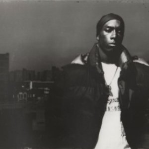 Image for 'Big L'