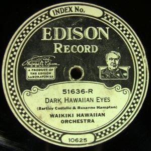 Image for 'Waikiki Hawaiian Orchestra'