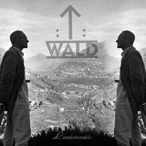 Image for 'T-wald'
