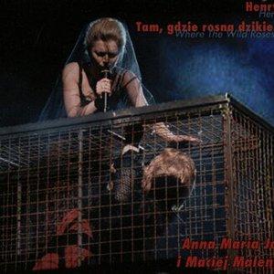 Image for 'Anna Maria Jopek & Maciej Maleńczuk'