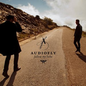 Image for 'Audiofly feat. Shaun Parkes'