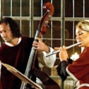 Image for 'Musica Bohemica, Gabriela Krčková, Jaroslav Krček'