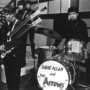 Image for 'Davie Allan & The Arrows'