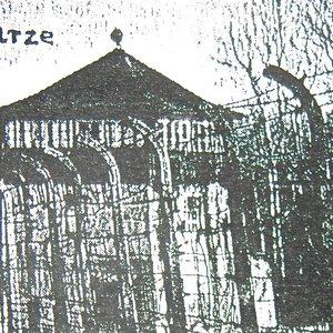Image for 'Schwarze Sonne'