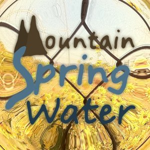 Image for 'Mountain Spring Water'
