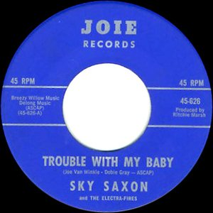 Image for 'Sky Saxon & The Electra-Fires'