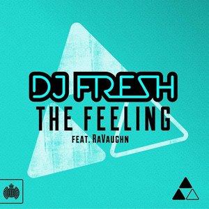 Bild für 'DJ Fresh feat. RaVaughn'