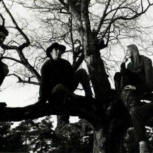 Image for 'Annabelle's Garden'