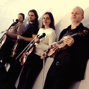 Image for 'Zehetmair Quartet'
