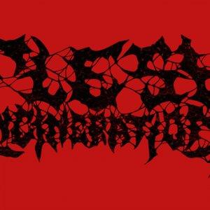 Image for 'Flesh Incineration'