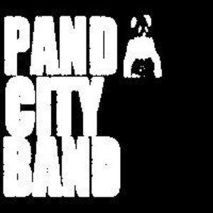 Image pour 'Panda City Band'