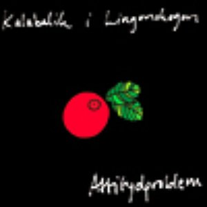 Image for 'Kalabalik i Lingonskogen'