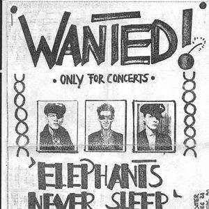 Image for 'elephants never sleep'