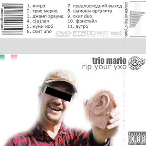 Image for 'Трио Марио'