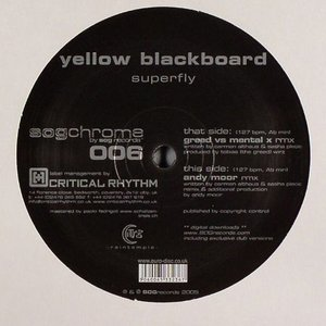 Image for 'Yellow Blackbird'