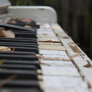 Immagine per 'Relaxing Piano Music Consort'