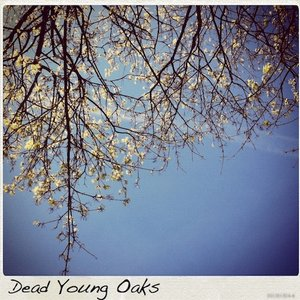 Image for 'Dead Young Oaks'
