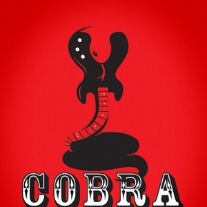 Image for 'Cobra Collective'