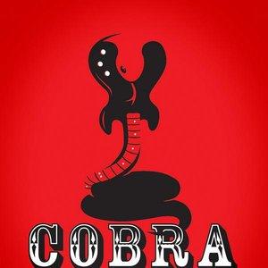 Image pour 'Cobra Collective'