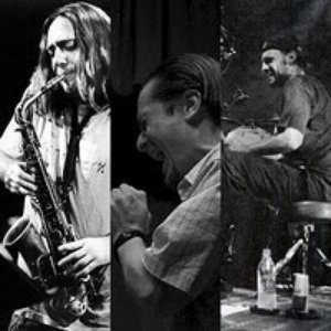 Image for 'Mike Patton, John Zorn & Dave Lombardo'