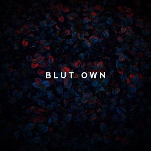 Image for 'Blut Own'