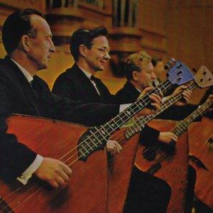 Bild für 'Osipov State Russian Folk Orchestra & Vitaly Gnutov'