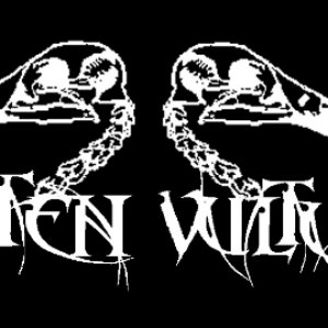 Image for 'ROTTEN VULTURES'