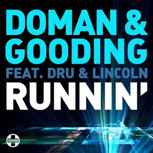 Image for 'Doman & Gooding feat. Dru & Lincoln'