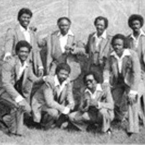 Image for 'Gospel Soul Revivals'