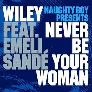 Image for 'Naughty Boy Presents Wiley Feat. Emeli Sandé'