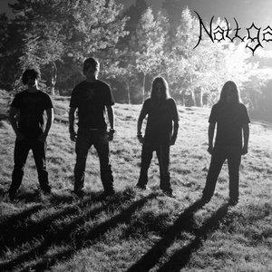 Image for 'Nattgand'