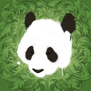 Image for 'The Arre Panda's'