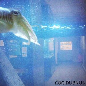 Image for 'Cogidubnus'