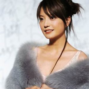Image for 'Vicki Zhao Wei'