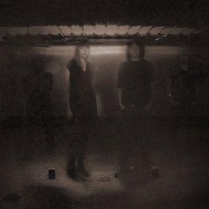 Bild für 'Epistasis'