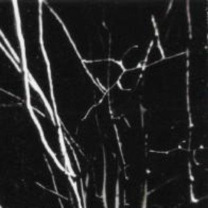 Image for 'Granitkorridor'